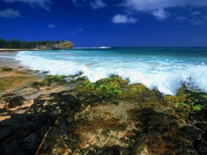 shipwrecks-beach-kauai-origini-hula-danza-hawaiiana-club-magica-milano